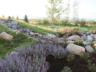 3_creek_landscaping_stream-view