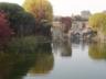 Postcard-Pond-Waterfall-View