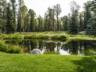Showcase-Estate-Pond-East-View